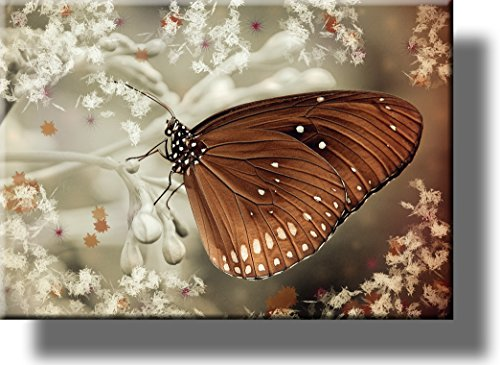 Butterfly Décor Sign Picture on Stretched Canvas, Wall Art, Ready to Hang! (Butterfly On The Wall)