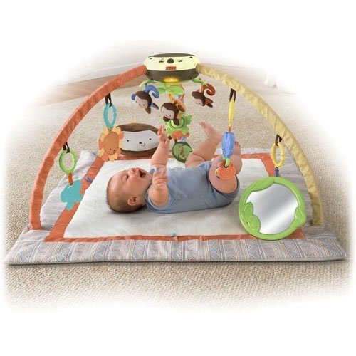 Fisher Price My Little SnugaMonkey Ultra Comfort Musical Gym (0-12 months) by Fisher-Price