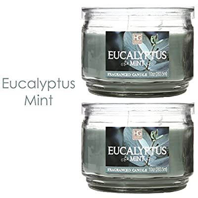 Hosley Set of 2 Eucalyptus Mint Highly Scented, 2 Wick, 10 Oz wax, Jar Candle. Ideal votive GIFT for party favor, weddings, Spa, Reiki, Meditation, Bathroom settings