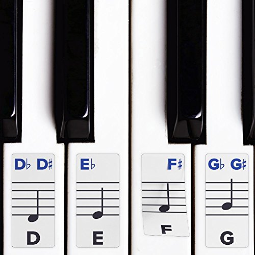 Piano Stickers for Keys – Removable w/ Double Layer Coating for 49 / 61 / 76 / 88 Keyboards - Musical Instrument Accessories