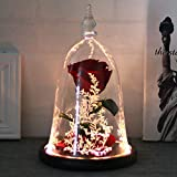 DDSKY Enchanted Rose, Beauty and The Beast Handmade Preserved Rose with LED Light in Glass Dome on Wood Base, 100% Real Rose for Christmas Valentine's Day, Red