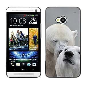 Super Stella Slim PC Hard Case Cover Skin Armor Shell Protection // M00148995 Polar Bear Bear Teddy Sleep Lazy // HTC One M7