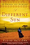 img - for A Different Sun: A Novel of Africa book / textbook / text book