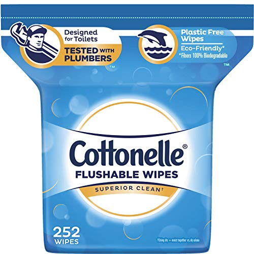 Cottonelle FreshCare Flushable Wipes for Adults, Alcohol Free, 252 Wet Wipes per Pack (Packaging May Vary) (Take The Change And Have A Nice Day)