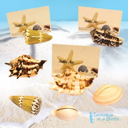 Seashell Place Card Holders (Natural Seashells) - Set of (Invitation In A Bottle)