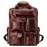 Polare Cool Cowhide Leather Multiple Backpack Day pack Travel Bag Stachel with 1 Year Warranty