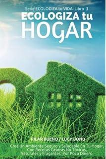 ECOLOGIZA tu HOGAR: Crea Un Ambiente Seguro y Saludable En Tu Hogar, Con Recetas