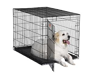 """MidWest 48"""" iCrate Folding Metal Dog Crate w/ Divider Panel, Floor Protecting """"Roller"""" Feet & Leak-Proof Plastic Tray; 48L x 30W x 33H Inches, XL Dog Breed"""