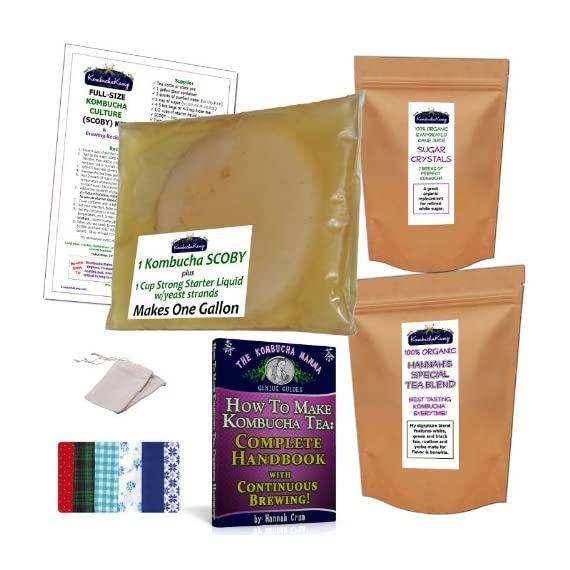 Brew Now KOMBUCHA KAMP MUSHROOM KIT (incl. 1 LRG SCOBY + 1 Cup Start Liquid & Complete pdf Handbook) 1 Includes 1 Large SCOBY plus 1 Cup Strong Starter Liquid - Makes 1 Gallon FULL SUPPORT via Forums, Facebook or E-mail as well as our DIY Guide & Tips GUARANTEED to brew a LIFETIME SUPPLY of delicious, inexpensive Kombucha if properly cared for