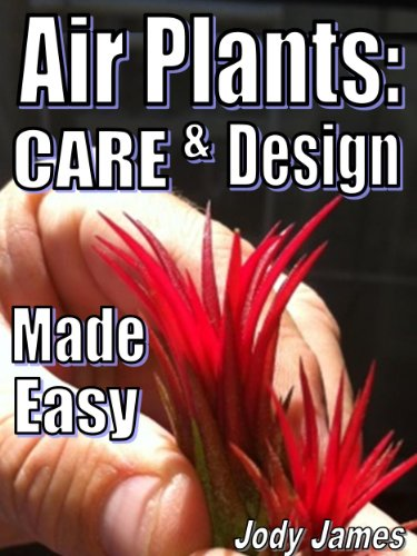 - Air Plants: Care and Design Made Easy