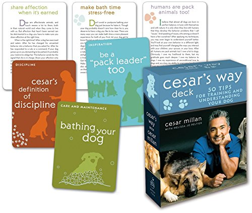 (Cesar's Way Deck: 50 Tips for Training and Understanding Your Dog)
