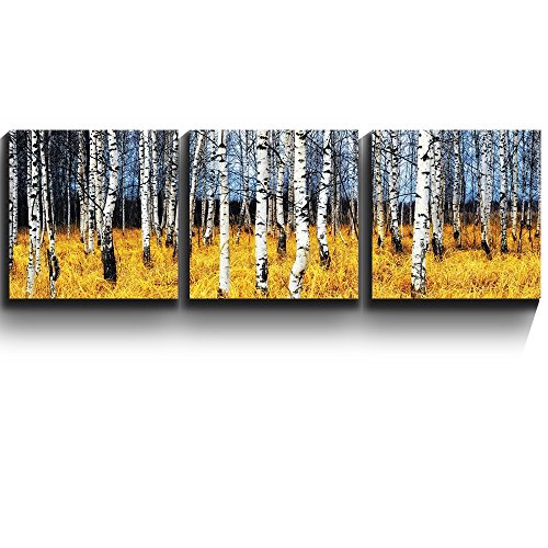 3 Square Panels Contemporary Art Beautiful Aspen Trees Fall colors Three Gallery ped Printed Piece x3 Panels
