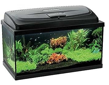 Classic 80 112 L, Capacidad de acuario: Amazon.es: Productos para mascotas