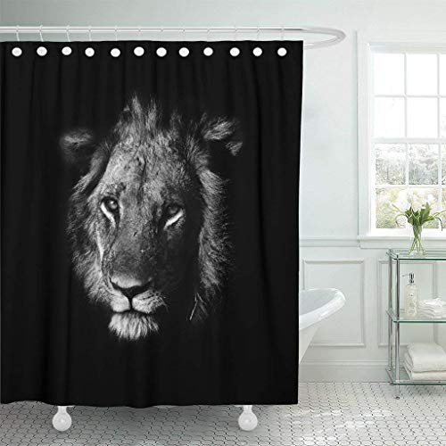 PAUSEBOLL Black Head Lion White African Animal Artistic Gazelle Wild Africa Aggression Shower Curtain Bathroom Sets with Hooks,Mildew Resistant Waterproof Polyester Curtain