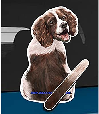 Springer Spaniel Dog Rear Car Window Sticker With Wagging Tail To Fit Wiper Arm