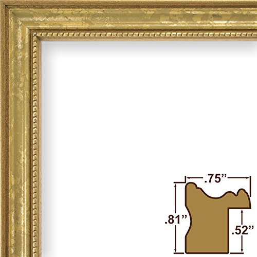 Craig Frames 314GD2026 0.75-Inch Wide Picture/Poster Frame in Ornate Finish, 20 by 26-Inch, Ornate Gold