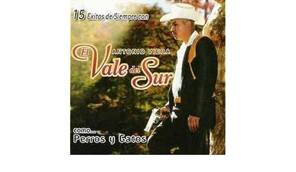 Perros Y Gatos by Antonio Viera El Vale Del Sur on Amazon Music - Amazon.com