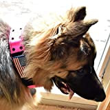 Dog Collars K9 Harness Tactical Military Style