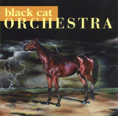 Black Cat Orchestra Minka Cat
