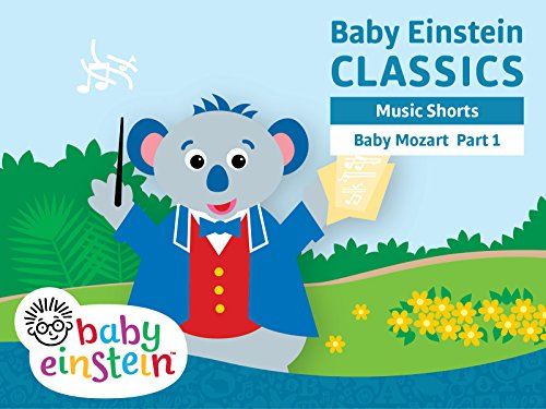 Baby Mozart Musical Festival Part 1 DVD Reviews