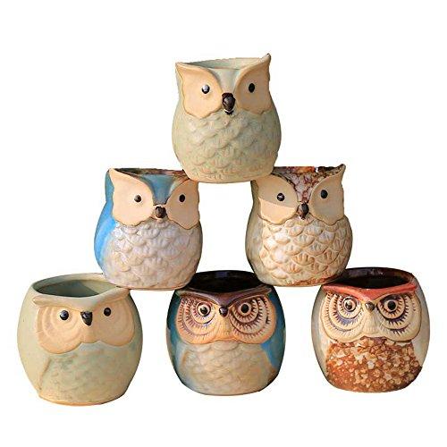 (Lulonpon Bonsai pots Owl Pot 6 Sets 2.5 Inch Flow Glaze Base Series Set Succulent Plant Pot Cactus Plant Pot Flower Cactus Pot Container Potted Hole Perfect Gife Concept(No Plants))