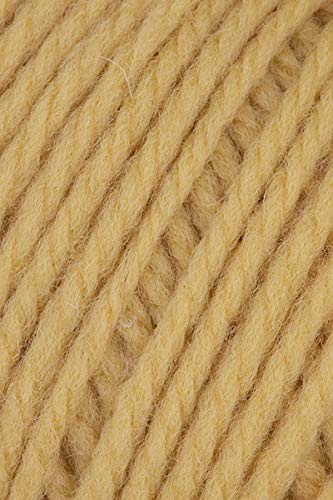 Brown Sheep Nature Spun Worsted Weight Yarn - - 302W - Harvest Wheat