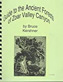 img - for Guide to ancient forests of Zoar Valley book / textbook / text book