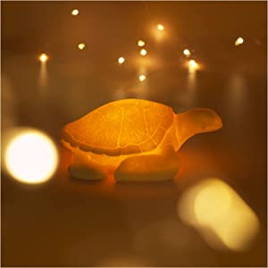 Sea Turtle Night Light Battery Powered Automatic Timer Sandstone Animal Night Light Ocean Theme Decor Beach Decorations for Home Bedroom Living Room Bathroom Birthday Gifts Party (Warm White)