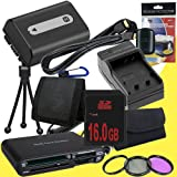 NPFH50 Lithium Ion Replacement Battery w/Charger + 16GB SDHC Memory Card + Mini HDMI + 3 Piece Filter Kit + Mini HDMI + USB SD Memory Card Reader /Wallet + Deluxe Starter Kit for Sony DCRDVD508, DCRDVD408, DCRDVD308, DCRDVD108, DCRDVD505, DCRDVD405, DCRDV