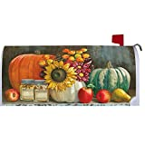 Autumn Still Life - Mailbox Makeover - Vinyl with Magnetic Strips - Licensed, Copyrighted and Made in the USA by Custom Decor Inc.