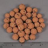 XL Leca Clay Pebbles Grow Media - Orchids • Aquaponics • Aquaculture • Hydroponics - by Cz Garden Supply (2 LB - XL Clay Pebbles)