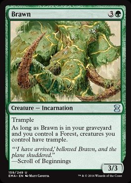 Amazon.com: Magic: the Gathering - Brawn (159/249) - Eternal ...
