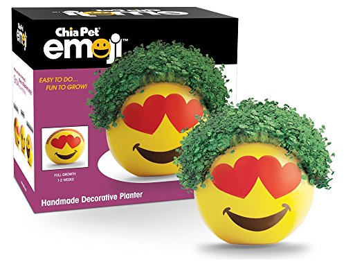 Chia Emoji Heart Eyes Handmade Decorative Planter, Yellow