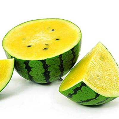Small Yellow Watermelon Fruit 10 Seeds Non-GMO