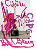 img - for Aaron Curry: Bad Brain book / textbook / text book