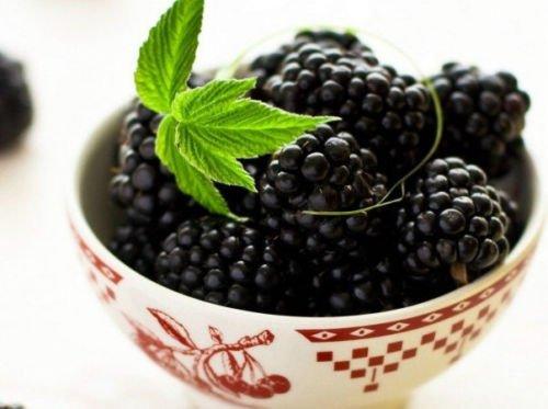 Organic 50 Blackberry Seeds Black Berry Giant Blackberries Triple Crown Mulberry - Blackberry Puree