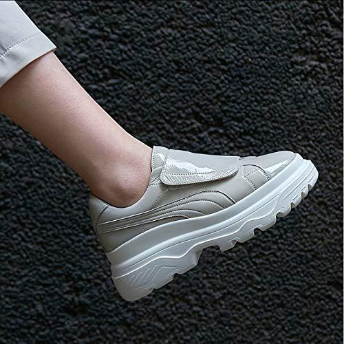 Grigio Punta donna White ZHZNVX Creepers Estate Primavera pelle In da Bianco Comfort Scarpe tonda Sneakers wqxCOqBEHU