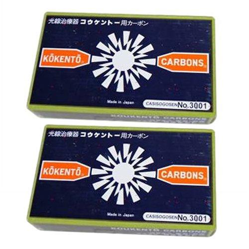 コウケントー 国産カーボン 100本(50本入り×2箱) 3001番 3001番  B0794T53NR