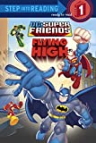 : Super Friends: Flying High (DC Super Friends) (Step into Reading)