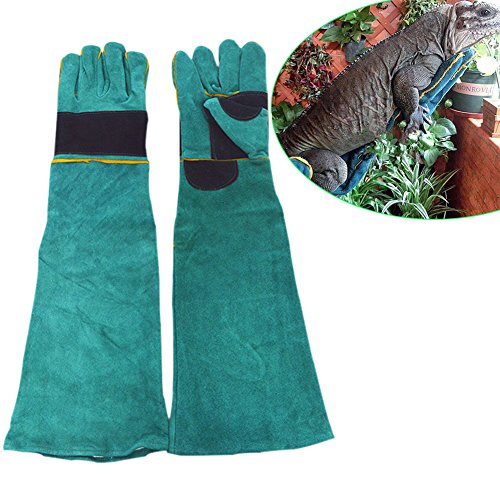 Animal Gloves - 7