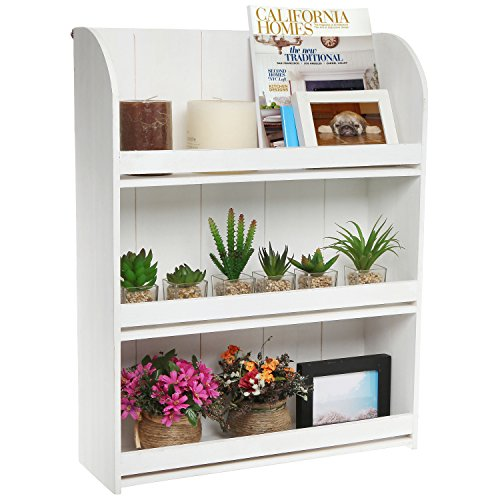 Whitewashed Organizer Decorative Freestanding Bookcase