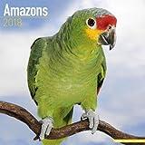 Amazon Parrot Calendar - Parrot Calendar - Bird Calendars - Calendars 2017 - 2018 Wall Calendars - Monthly Wall Calendar by Avonside
