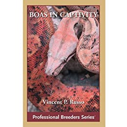 Boa Constrictors in Captivity - Kindle edition by Vin Russo