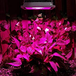 ZITRADES 20W Hydroponic Plant Flood LED Grow Lights Blue 460nm Red 630nm Bulb Lamp Lighting