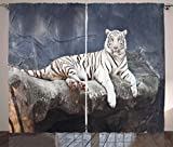 Cheap Ambesonne Tiger Curtains, Albino Cat Sitting on Rock Sublime Nature Marvelous Animals Endangered Species, Living Room Bedroom Window Drapes 2 Panel Set, 108 W X 84 L Inches, Slate Blue White