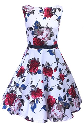 Milk Moon Vintage - Vestido estilo Años 50,diseño de rosas Rosa Roja