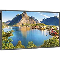 NEC Display E805-AVT, 80 1080p Full HD LED-Backlit LCD Flat Panel Display, Black