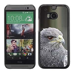 PC/Aluminum Funda Carcasa protectora para HTC One M8 hawk grey prey bird beak eye feather / JUSTGO PHONE PROTECTOR