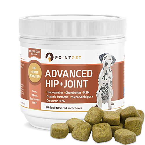 POINTPET Advanced Hip and Joint Supplement for Dogs with Glucosamine, MSM, Chondroitin, Omega 3, 6, Organic Turmeric - Improves Mobility and Hip Dysplasia, Arthritis Pain Relief, 90 Soft Chews by POINTPET
