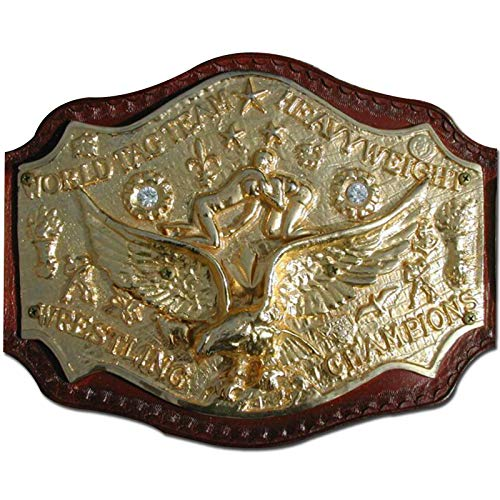 EasyBuyingShop NWA 7 Plate Cast World Tag Team Heavyweight Wrestling Title Replica Championship Belt - Brass Metal 4mm Plates (Belt Replica Nwa)